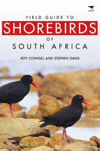 shorebirds_cover8