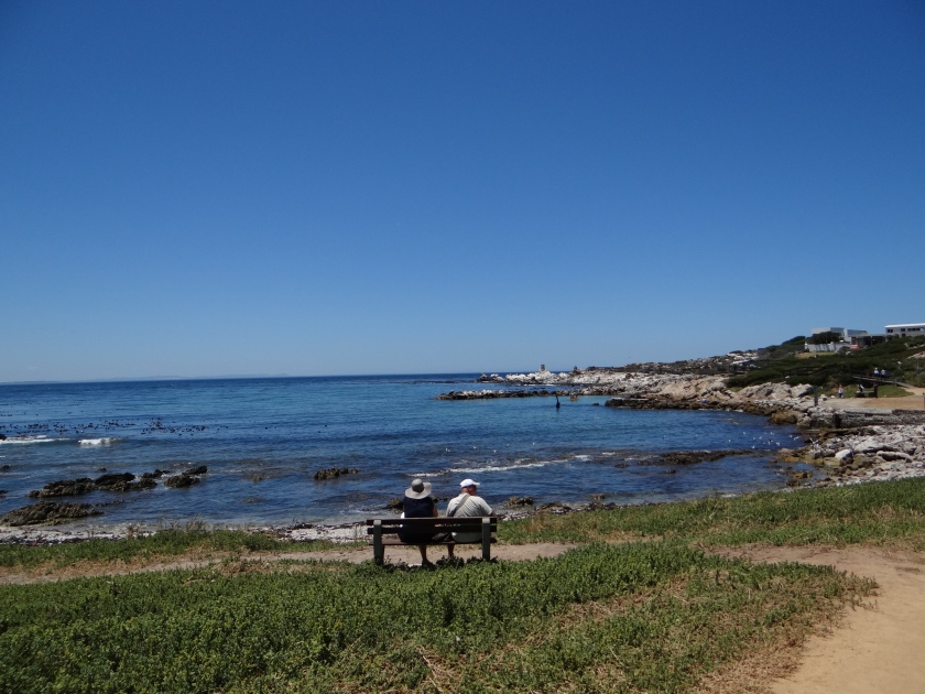 Betty's Bay, home to the African Penguin.