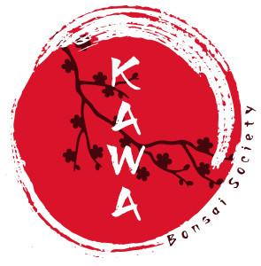 kawa-ok-quality-2